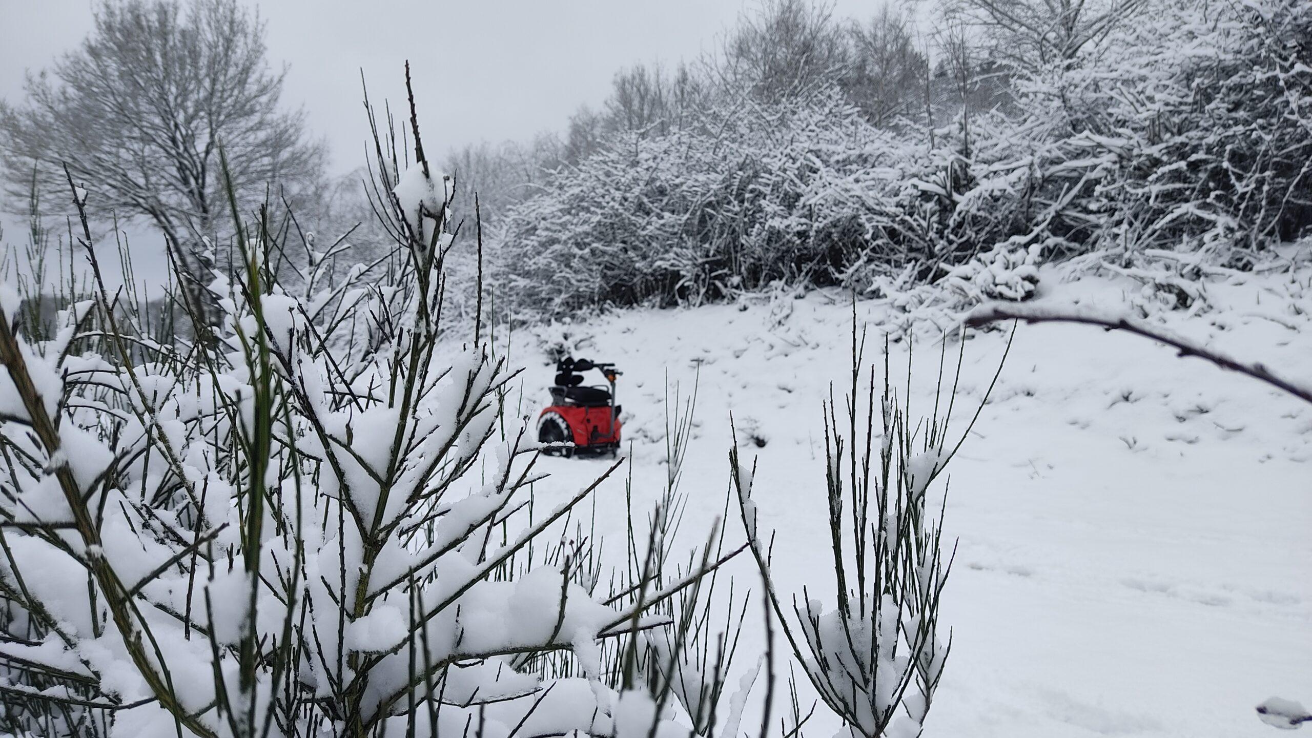 Eine Schneefahrt mit Genny