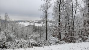Schneefahrt die Zweite