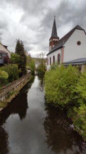 Nationalpark Tour 11 des Eifelvereins